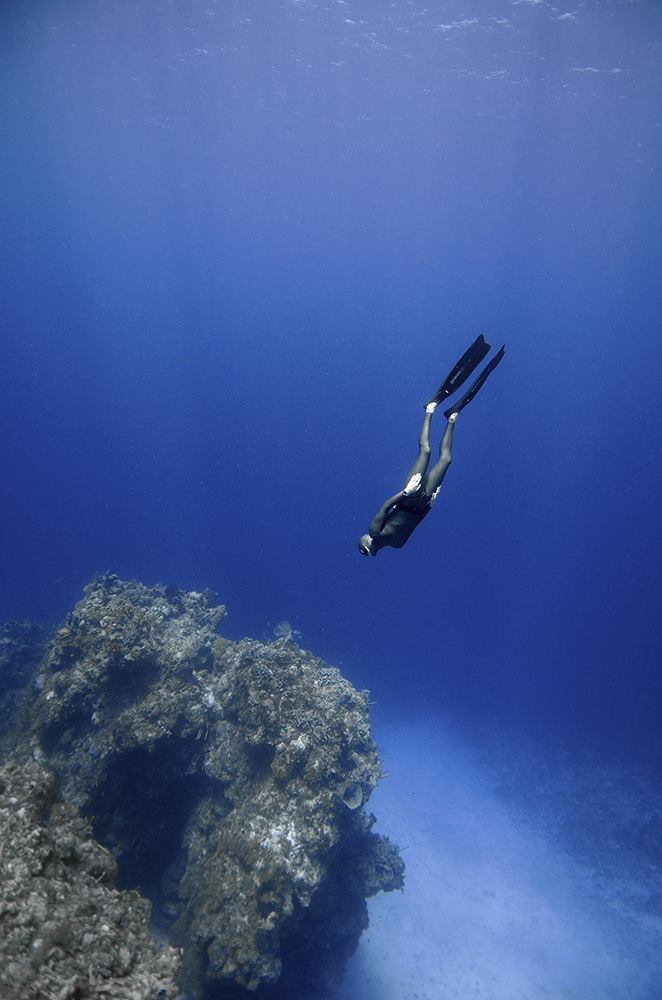 Free diving courses in Mallorca